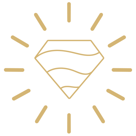DavidTishbi Sun Logo